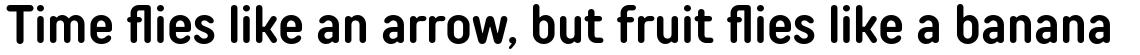 TT Rounds Neue Condensed DemiBold