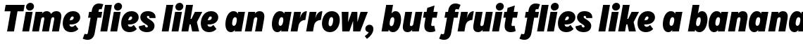 Draft E Black Italic
