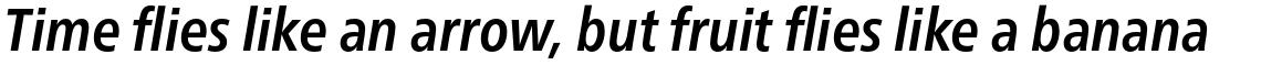 Neue Frutiger Pro Condensed Bold Italic